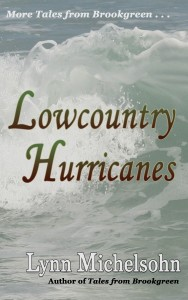 Lowcountry Hurricanes book cover